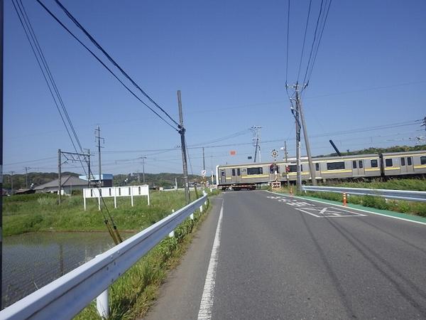 IMGP3374.jpg